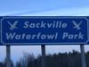 Sackville Waterfowl 1
